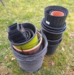 Free Plastic Pots (Bryan)