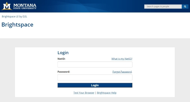 How to Login to D2L MSU