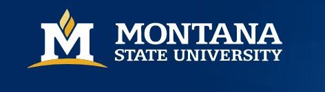 Montana State University (MSU)