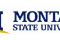 D2L Montana State University